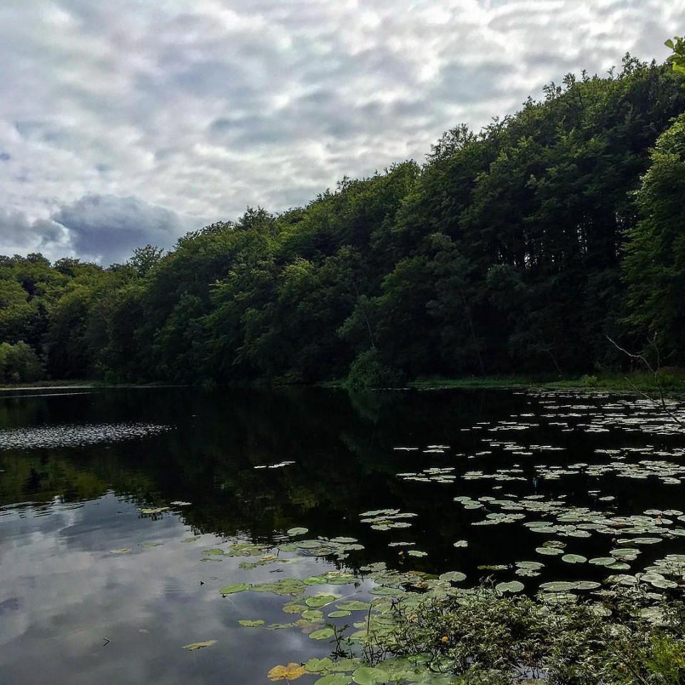Der schwarze See