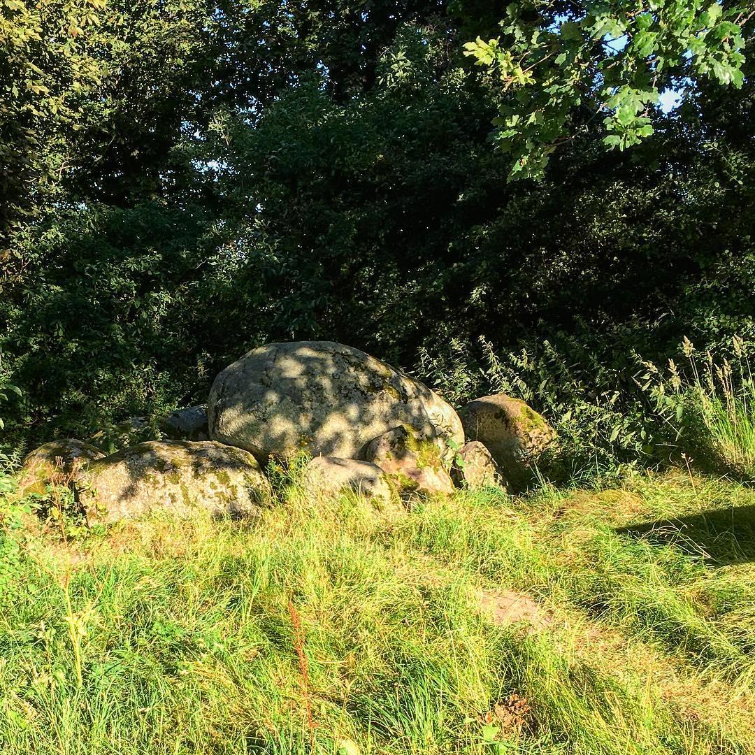 Großsteingrab bei Moritzdorf auf Rügen