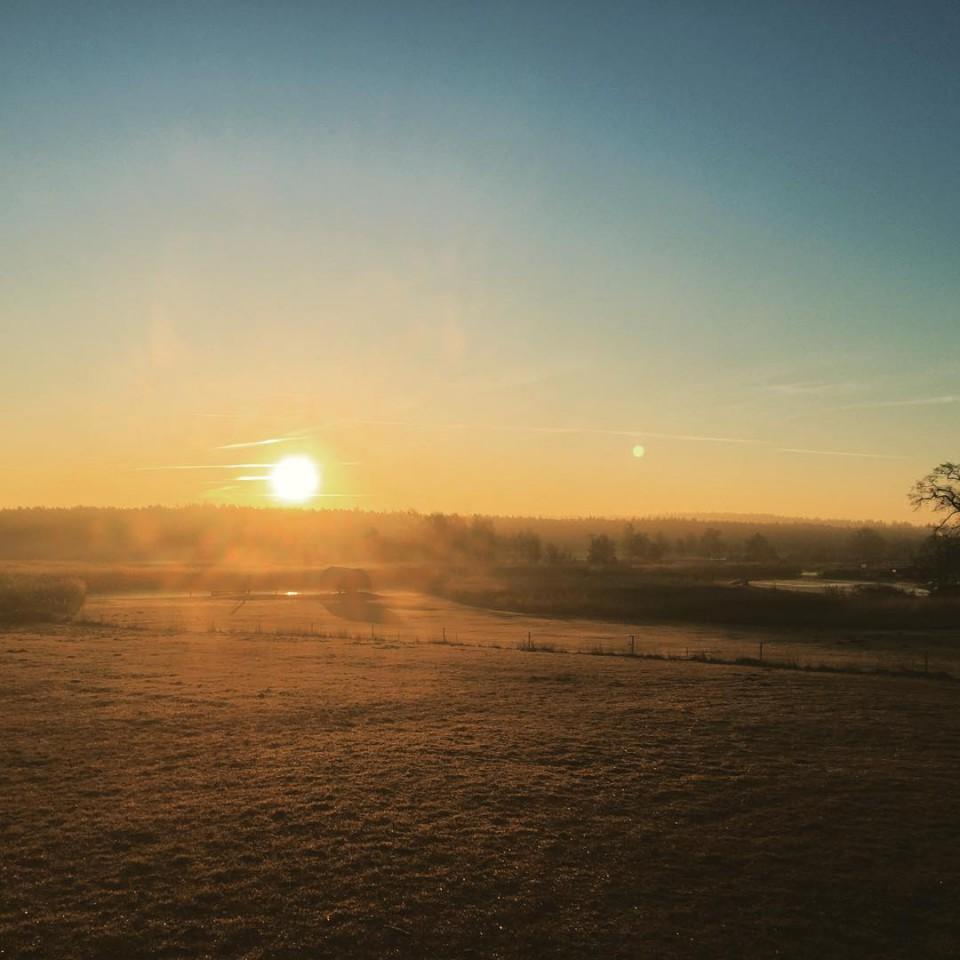 Guten Morgen Rügen