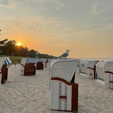 Die Möwe hat uns gute Aussichten für Morgen mitgeteilt. Bist Du morgen mit am Strand? Es ist Badewetter angesagt. #ruegen #rügen #ostsee #virtualruegality #balticsea #inselrügen #wirsindinsel  #germany #ostseeliebe #meer #strand #mvtutgut #ostseeküste #inselruegen #aufnachmv  #rügenliebe #ruegenfotos #gemeinsamvoran #deutschland #meckpomm #landzumleben #mvhältzusammen #ig_vorpommern #MVMoment