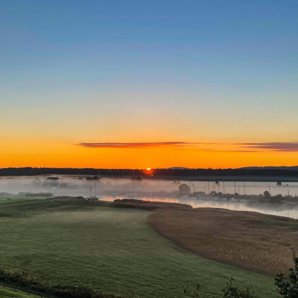 Guten Morgen. Heute Morgen lag Nebel über der Baaber Beek