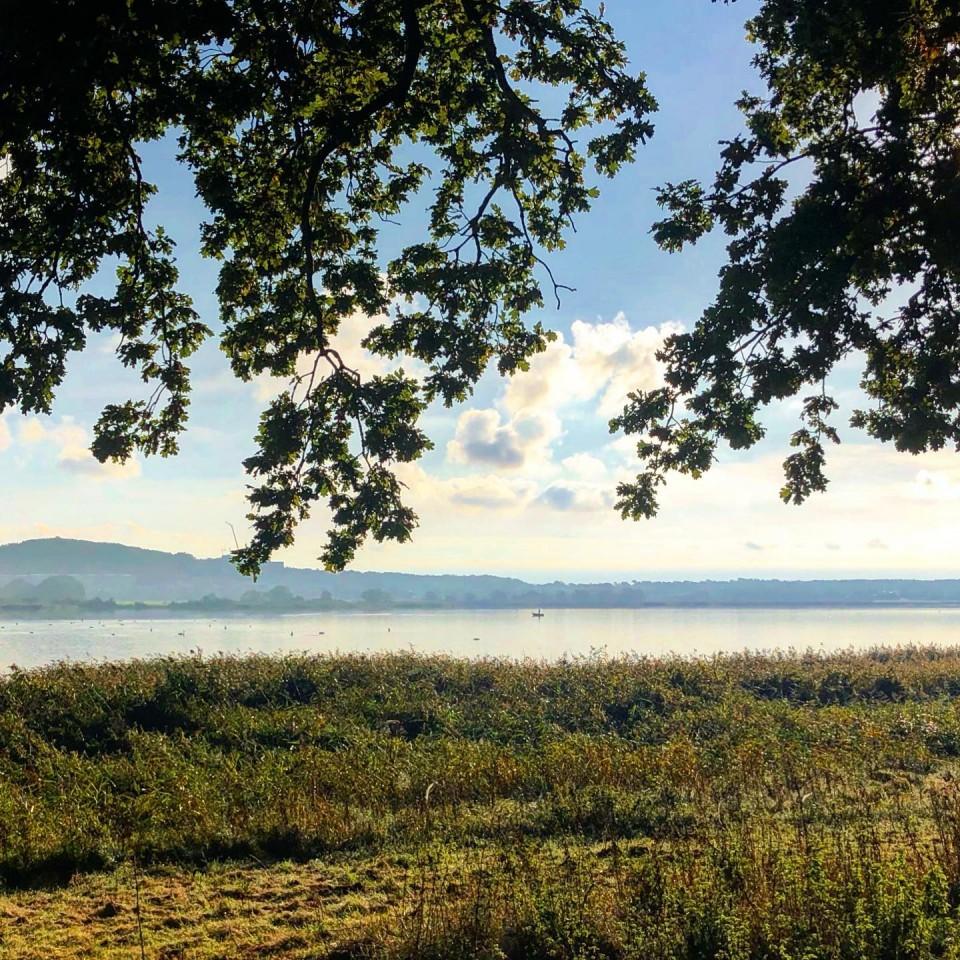 Selliner See #rügen #mecklenburgvorpommern