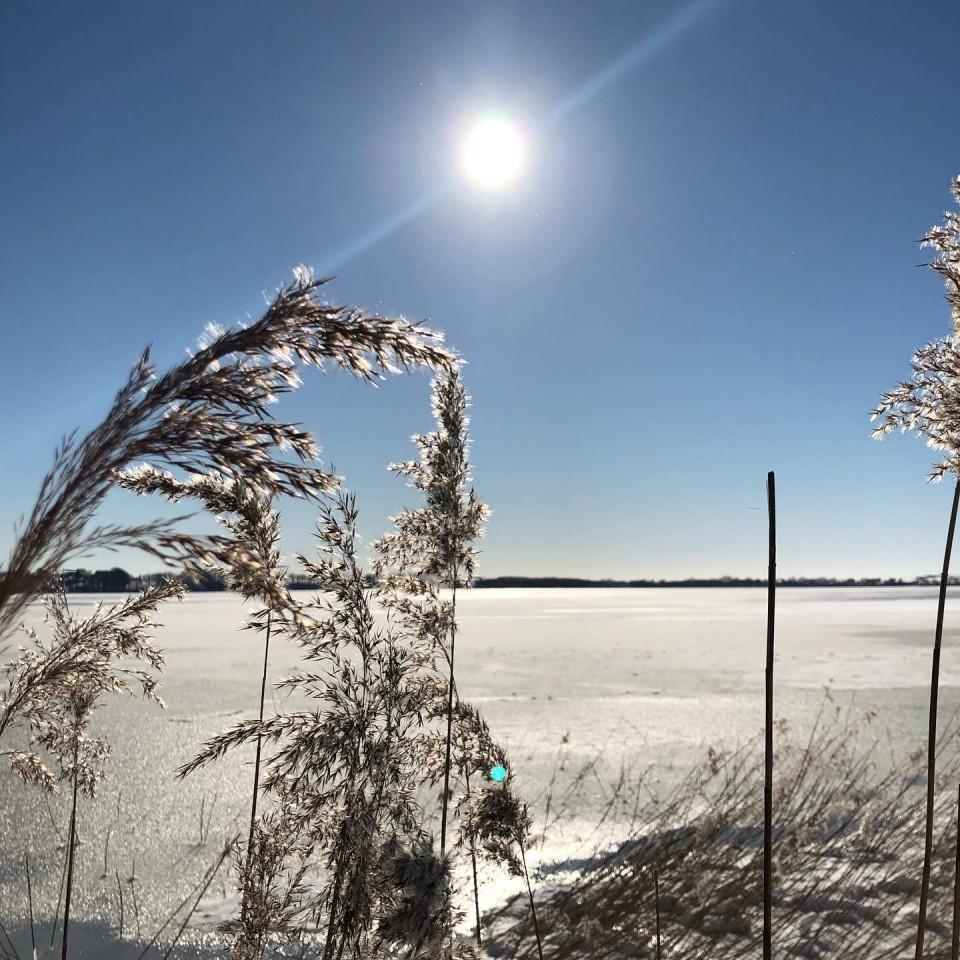 Winter am Bodden #rügen #sellin #seedorf #ichbineinselliner @ostseebadsellin @inselruegen