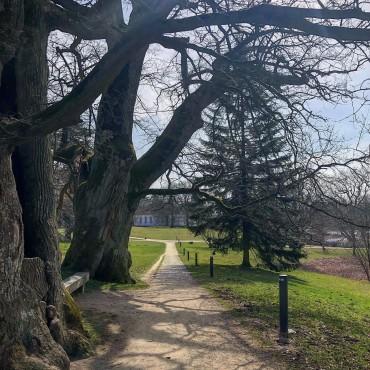 Im Park. Putbus auf Rügen
